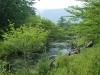 戦場ヶ原を流れる湯川