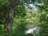 清らかな流れの湯川