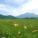 尾瀬 2010年 夏(ニッコウキスゲ)Vol.2