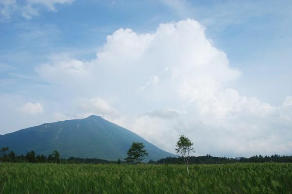 奥日光 戦場ヶ原と男体山