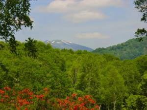 遠くに見える尾瀬の至仏山